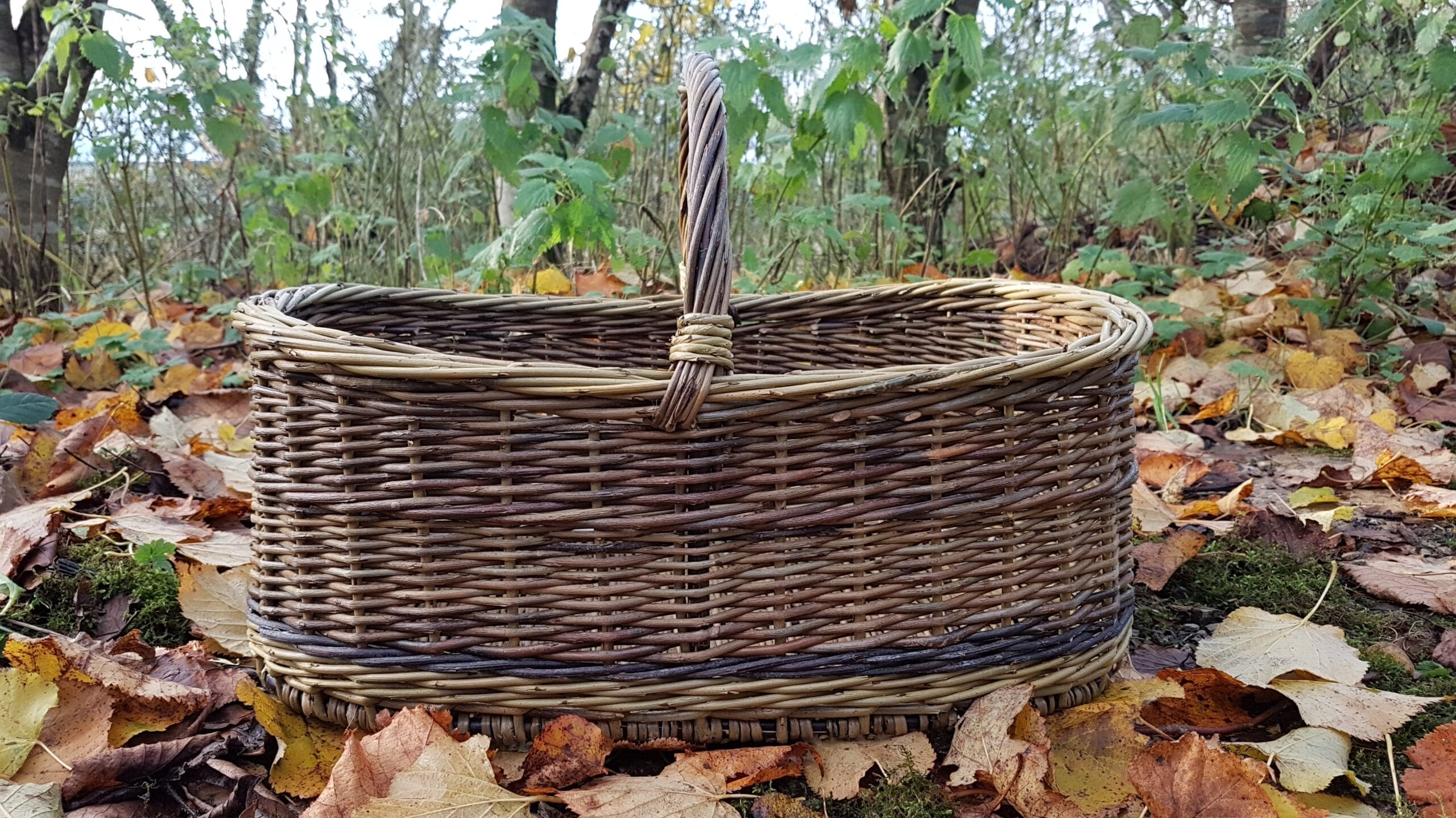 ERIN shopping basket