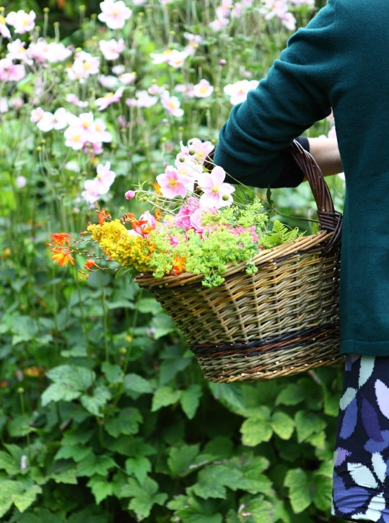Collecting flowers in woven basket
